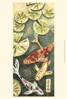 Small Koi Pond II Framed Print
