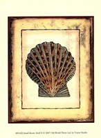 "Small Rustic Shell II - 10"" x 13"" - $10.49"