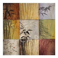 Bamboo Nine Patch II Framed Print
