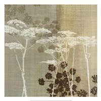 "Lace I by Tandi Venter - 20"" x 20"""