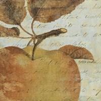 """Joli Fruit I by John James Audubon - 20"""" x 20"""""""