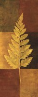 Woodland Impressions II Fine Art Print