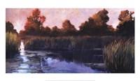 The Lily Pond Fine Art Print