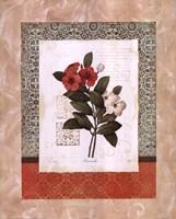 Tulip Silhouette Fine Art Print