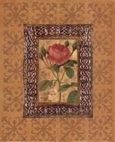 "Rose Illumination I by Merri Pattinian - 8"" x 10"""