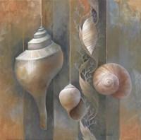 "Ocean Treasures I by Elaine Vollherbst-Lane - 12"" x 12"", FulcrumGallery.com brand"