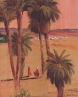 "El Haouat by John James Audubon - 16"" x 20"""