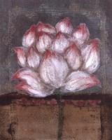 "Fleur by John James Audubon - 16"" x 20"", FulcrumGallery.com brand"