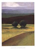 Field of Light Fine Art Print