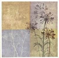 "Wildflowers II by John James Audubon - 19"" x 19"""