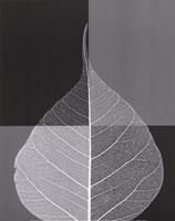 Crystalline Form I (Mini) Framed Print