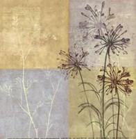 "Wildflowers II (Mini) by John James Audubon - 8"" x 8"""