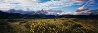 "Fitz Roy, Parque National Los Glaciares, by John James Audubon - 59"" x 20"", FulcrumGallery.com brand"