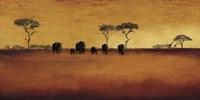 Serengeti II Fine Art Print