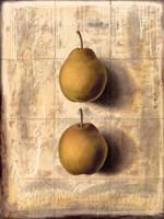 """Dans L´Ombre Ses Desirs by John James Audubon - 24"""" x 32"""""""