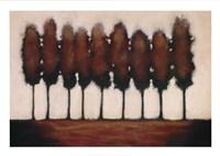 Nine Trees Fine Art Print