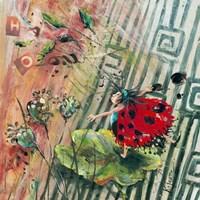 "Feecinelle Tempete by John James Audubon - 12"" x 12"""