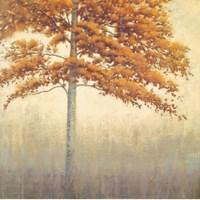 "Cinnabar by John James Audubon - 28"" x 28"""