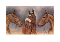 Three Winter Kings Fine Art Print