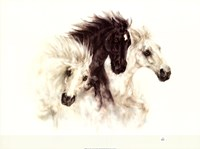 """30"""" x 24"""" Horses Running Pictures"""
