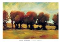Storm Swept Fine Art Print