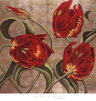 Scarlet Arabesque Fine Art Print