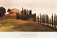 Tuscan Hills Fine Art Print