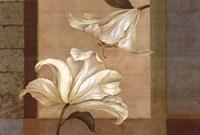"Lily Duet - Cs by Pamela Gladding - 36"" x 24"""