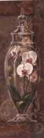 "12"" x 36"" Orchid Pictures"