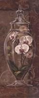 "Asian Apothecary II - Mini by Jillian Jeffrey - 8"" x 20"""