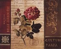 Belle Jardin II Fine Art Print