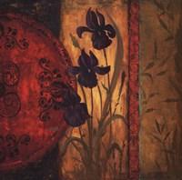 "Iris Fusion II by Linda Wacaster - 24"" x 24"""