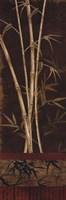 """Bamboo Garden II by Maria Donovan - 12"""" x 36"""", FulcrumGallery.com brand"""