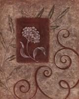 "Florescence I by Jane Carroll - 16"" x 20"" - $10.49"