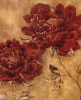 Glorious Rosso II Fine Art Print