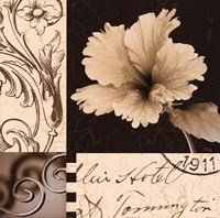 Hibiscus Blossom II Fine Art Print