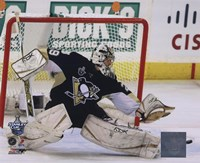 Marc-Andre Fleury Game 3 of the 2008 NHL Stanley Cup Finals Action; #11 Fine Art Print