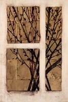 "Monochrome Blossom by Fiona Anderson - 24"" x 36"""