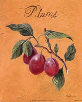 Plums Fine Art Print