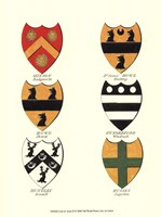 Coat of Arms II Fine Art Print
