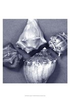 "Shell Convergence V by Renee Stramel - 13"" x 19"""