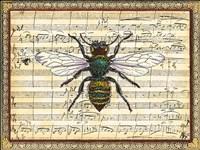 Bumblebee Harmony I Fine Art Print