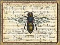 Bumblebee Harmony II Fine Art Print