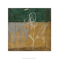 Pressed Wildflowers II Fine Art Print