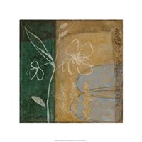 Pressed Wildflowers III Fine Art Print