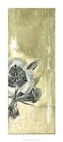 """Celadon in Bloom III by Jennifer Goldberger - 16"""" x 36"""""""