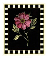 Pink Peony I Framed Print