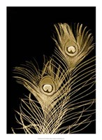 Plumes D'or II Framed Print