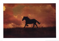 The Forgotten Horse Fine Art Print