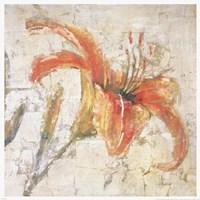 Sorbet Lily I Framed Print